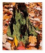 Lichen Castle In Autumn Leaves Fleece Blanket