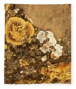 Lichen On The Piran Walls Fleece Blanket
