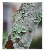 Lichens 2 Fleece Blanket