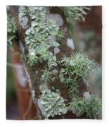Lichens 4 Fleece Blanket