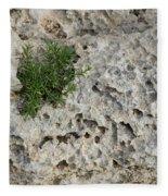 Life On Bare Rock - Pockmarked Limestone And Thyme Fleece Blanket