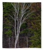 Life's A Birch No.1 Fleece Blanket