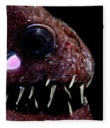 Light Organ Of Threadfin Dragonfish Fleece Blanket