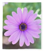 Light Purple Gazania Macro 1  Fleece Blanket