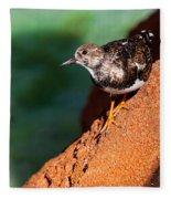 Lil Bird Fleece Blanket