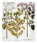 Lilac And Box, 1613 Fleece Blanket