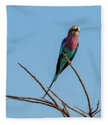 Lilac Breasted Roller 5 Fleece Blanket