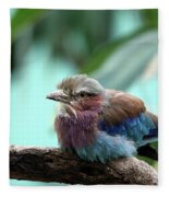 Lilac Breasted Roller Fleece Blanket