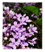 Lilac Bush In Spring Fleece Blanket