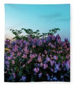 Lilacs And Sunset To Blue Hour Transition Over Gamla Stan In Stockholm Fleece Blanket