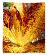 Lilies Glowing Orange Lily Flower Floral Art Print Canvas Baslee Troutman Fleece Blanket