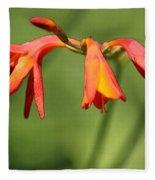 Lilies On Fire Fleece Blanket