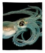Lilliput Longarm Octopus Fleece Blanket