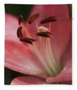Lilly Pink Craquelure Fleece Blanket