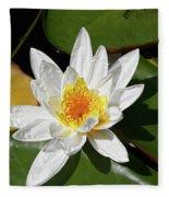 Lily Floating On Pond IIi Fleece Blanket