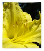 Lily Flower Artwork Yellow Lilies 1 Giclee Art Prints Baslee Troutman Fleece Blanket