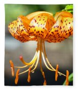 Lily Flowers Art Orange Tiger Lilies Giclee Baslee Troutman Fleece Blanket