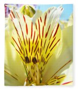 Lily Flowers Art Prints Yellow Lillies 2 Giclee Prints Baslee Troutman Fleece Blanket