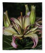 Lily In The Rain Fleece Blanket