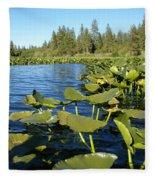 Lilypads On Amber Lake Fleece Blanket