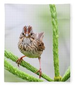 Lincoln's Sparrow Fleece Blanket
