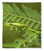Linear Winged Grasshopper Fleece Blanket