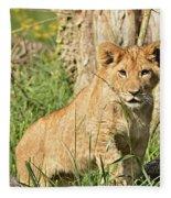 Lion Cub 2 Fleece Blanket