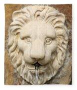 Lion Head Fountain Fleece Blanket