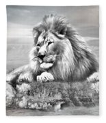 Lion Resting  Fleece Blanket