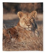 Lioness Fleece Blanket