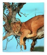 Lioness In Africa Fleece Blanket