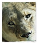 Lioness Up Close Fleece Blanket