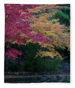 Litha Park Ashland Oregon Fleece Blanket