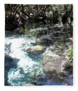 Lithia Springs Fleece Blanket