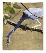 Tricolored Heron Fishing Fleece Blanket