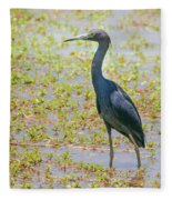 Little Blue Heron In Weeds Fleece Blanket