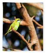 Little Green Bee Eater On A Branch Fleece Blanket