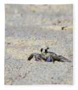 Little Nag's Head Crab Fleece Blanket