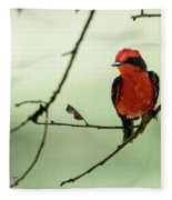 Little Red Beauty - Vermilion Flycatcher Fleece Blanket