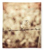 Little Sparrow Fleece Blanket
