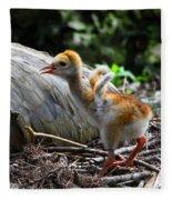 Little Wings Fleece Blanket