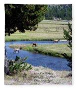 Live Dream Own Yellowstone Park Elk Herd Text Fleece Blanket