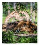 Living In Harmony - Lion Fleece Blanket