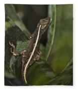 Lizard 2 Fleece Blanket