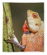 Lizard In Maldive Fleece Blanket