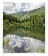 Lizard Lake Reflections Fleece Blanket