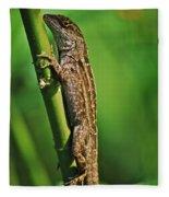 Lizard Fleece Blanket