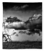 Loan Tree Fleece Blanket