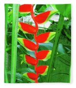 Lobster Claw Heliconia Fleece Blanket