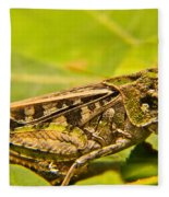 Locust In Green Fleece Blanket